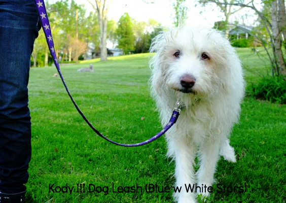 Kody III Blue Hemp Dog Leash with White Stars