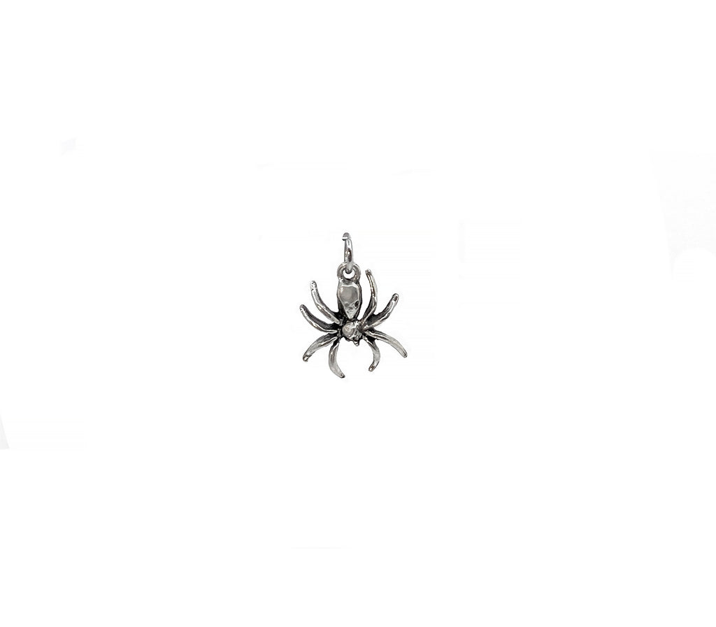 The Spider Charm