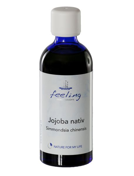 Jojoba nativ Simmondsia chinensis