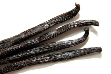 Vanilleöl Absolue 90:10 Vanilla planifolia