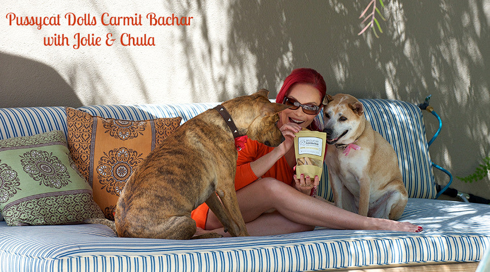 Carmit Bachar Pussycat Dolls feeding her dogs Jolie & Chula Biscuits by Lambchop
