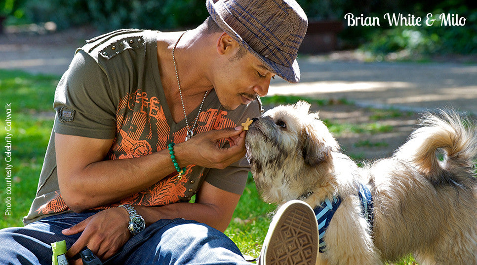 Brian White sharing a moment with his dog Milo feeding him a Starlets biscuit from Biscuits by Lambchop