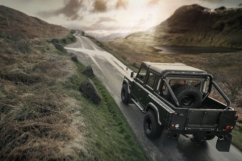 Chelsea Truck Company Defender Roll Bars