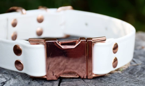 DogDog Goose Biothane Collar - White with Rose Gold Buckle