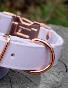 DogDog Goose Biothane Collar - Pastel Purple with Rose Gold Buckle