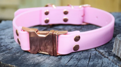 DogDog Goose Biothane Collar - Pastel Pink with Gold Buckle