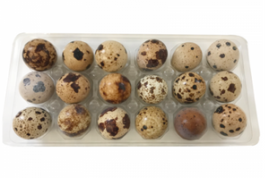 Big Country Raw - Frozen Quail Eggs
