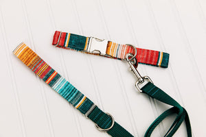 Walk in the Bark - Ombre Stripe Water Resistant Dog