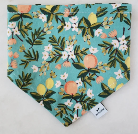 Mimio & Co Bandanas - The Orchards