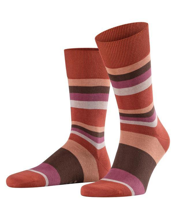Falke Filter Stripe Cotton Socks - Bean - Livingston - Castle Douglas