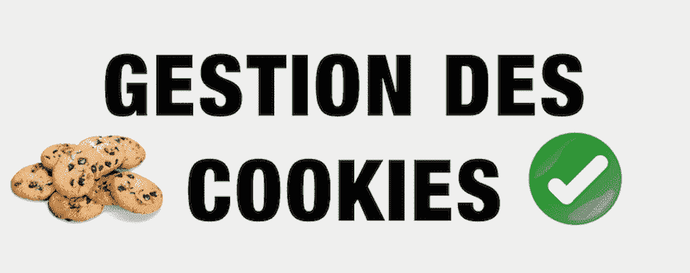 COMMENT INSTALLER LA BARRE DE COOKIE SHOPIFY  : POLITIQUE RGPD