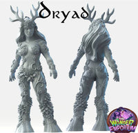 Dryad warrior