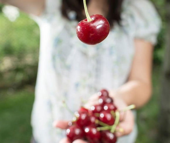 What is Acerola Cherry Good for? | Fruit Of Spirit
