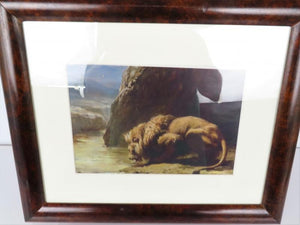"""Lion Drinks at River Rock"" Reprint Photo"