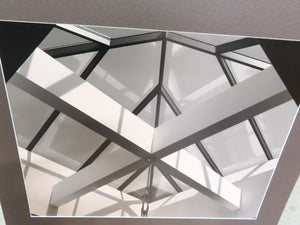 "Black and White MSU Unframed Photo on Poster Board ""Skylight"""