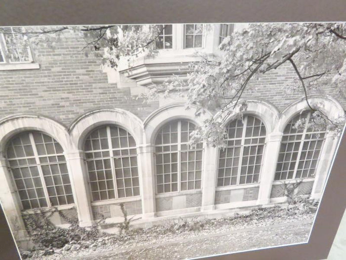 "Black and White MSU Unframed Photo on Poster Board ""Campbell Hall Windows"""