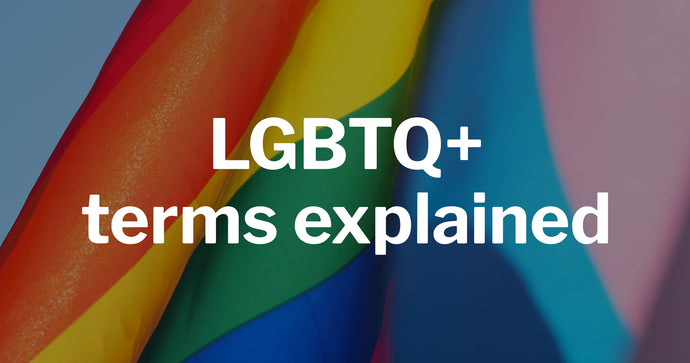 What does LGBTQ+ mean?