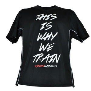 This is Why We Train DRI-FIT V Neck Jersey Tee