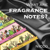 What are Fragrance Notes?