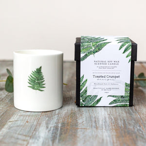 Toasted Crumpet  Woodland Fern and Oakmoss Candle in a Fine Bone China Pot