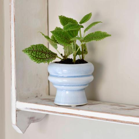 Burgon & Ball - Florence Glazed Pot - Light Blue
