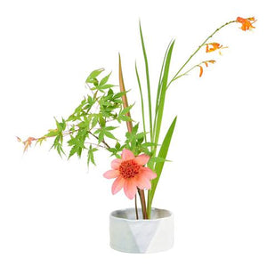 Burgon & Ball - Fuji Japanese Flower arranging bowl