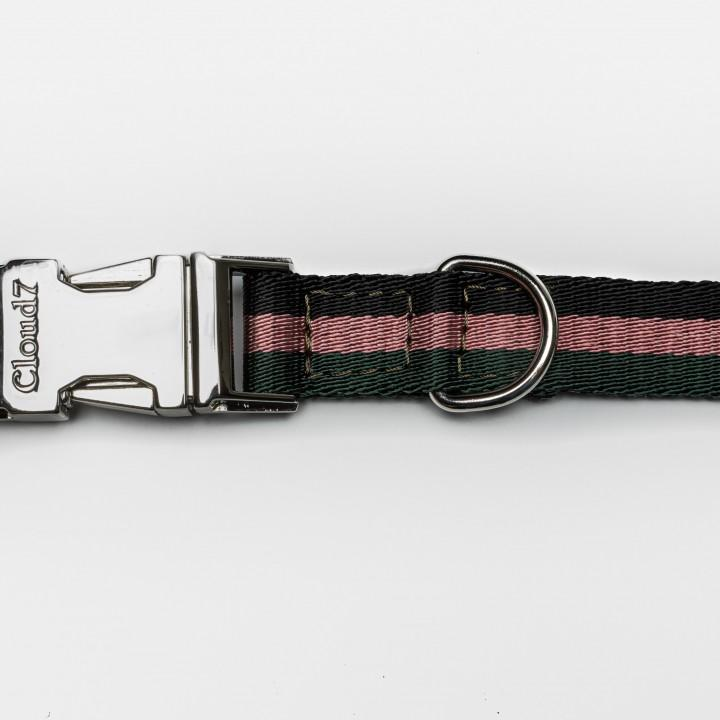 Dog Collar Click - Olympiapark Forrest Dog Collar Cloud7