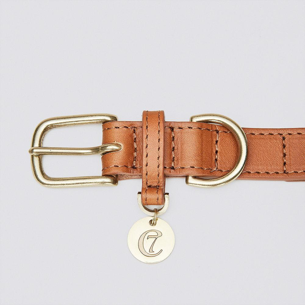 Dog Collar Hyde Park - Cognac
