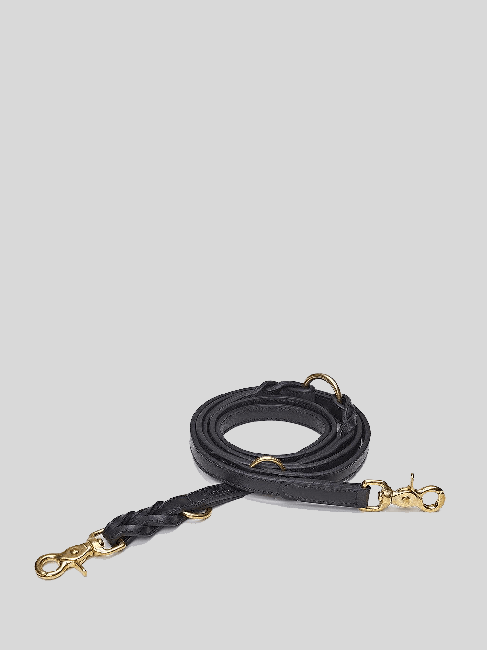 Dog Leash - Hyde Park Black Dog Leash Cloud7