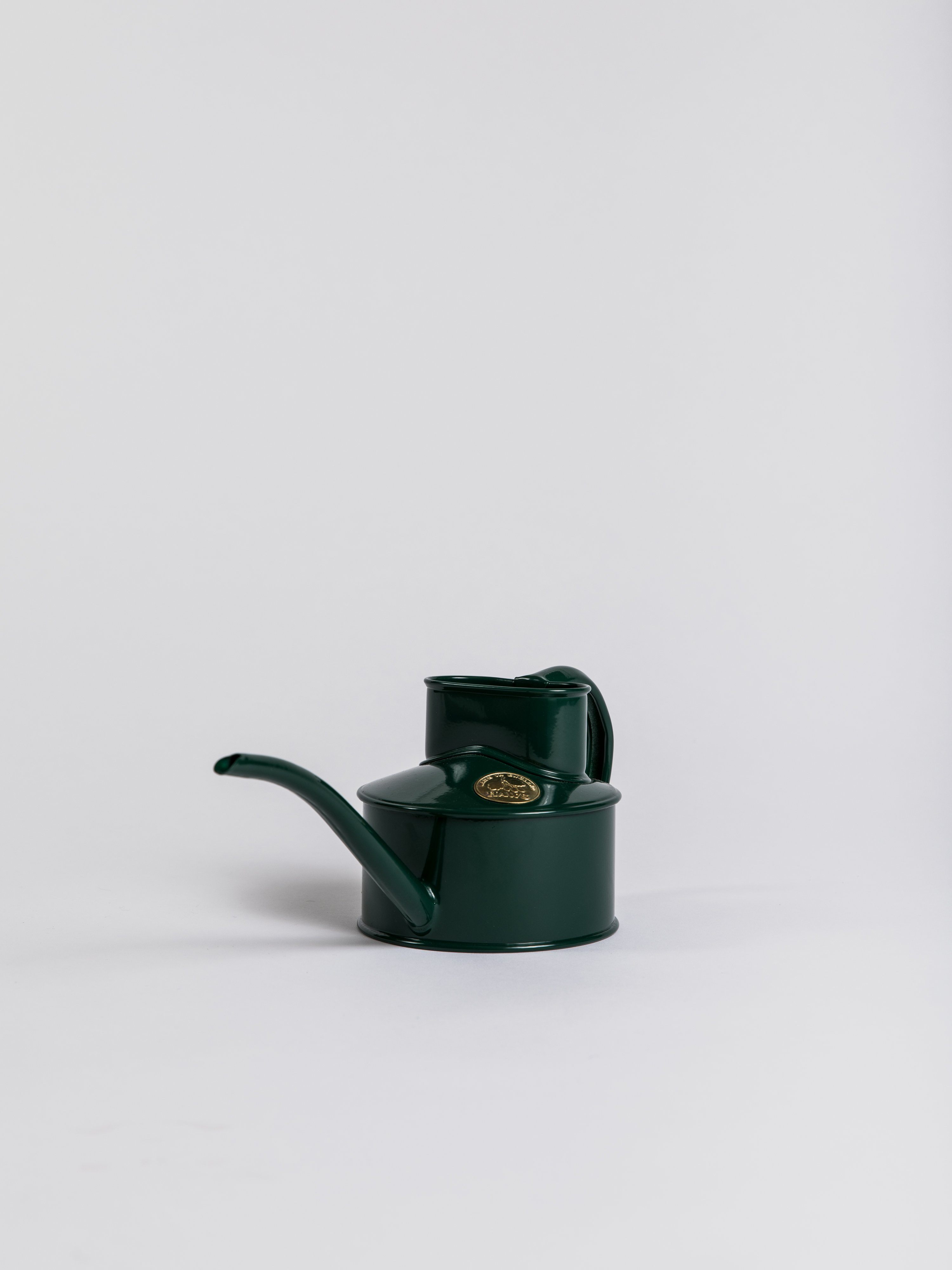 Indoor Pot Waterer (Small) - Green Indoor Watering Can Haws