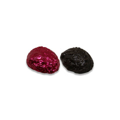Dark Chocolate Abalone - 5-Pack