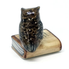 Load image into Gallery viewer, Owl on closed book,