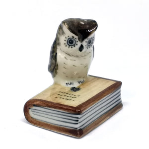 Owl on closed book,