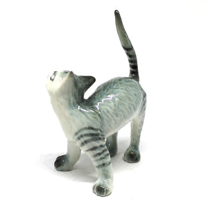 Tiger Gray Cat No. 2