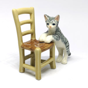 Tiger Gray Cat on Chair