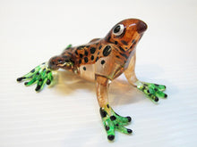 Load image into Gallery viewer, Glass Frog Black, Dot, Brown กบ