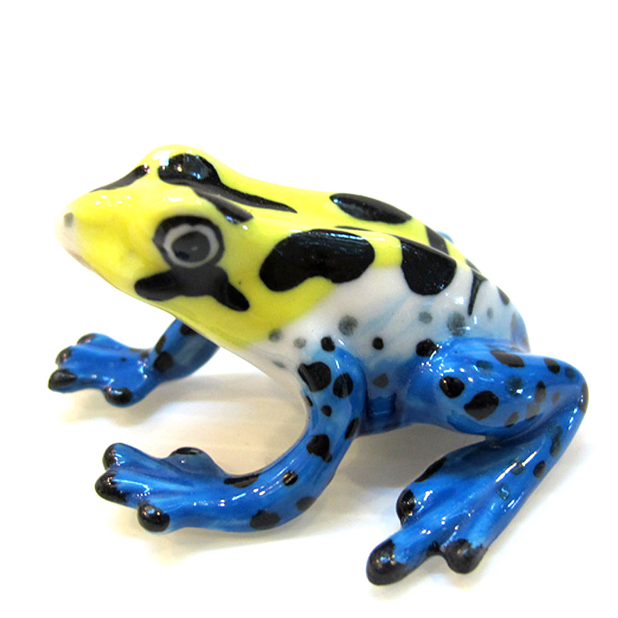 Ceramic Mimic Poision Frog Mimic