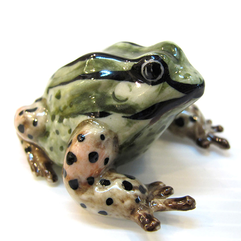Ceramic March Frog