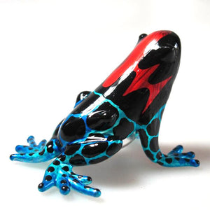 Glass Frog magic, Blue