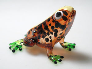 Glass Frog, Brown กบ