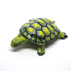 Turtle Green-Yellow