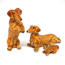 Load image into Gallery viewer, Cute 3 Dashchund Dog