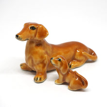 Load image into Gallery viewer, Cute 2 Dashchund Dog