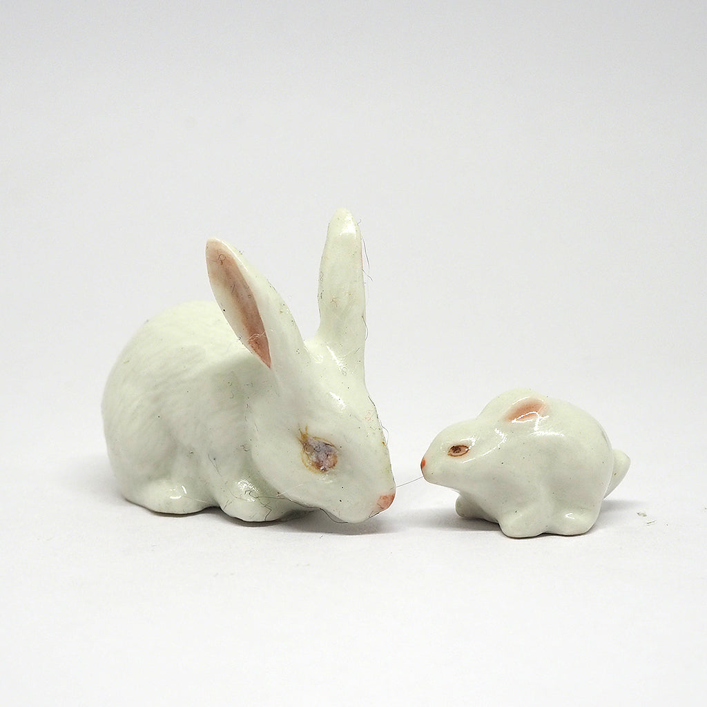 Cute 2 White Bunny