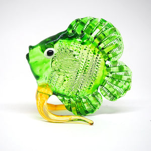 Glass Green Dicus Fish