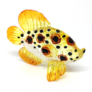 Glass Fish 062