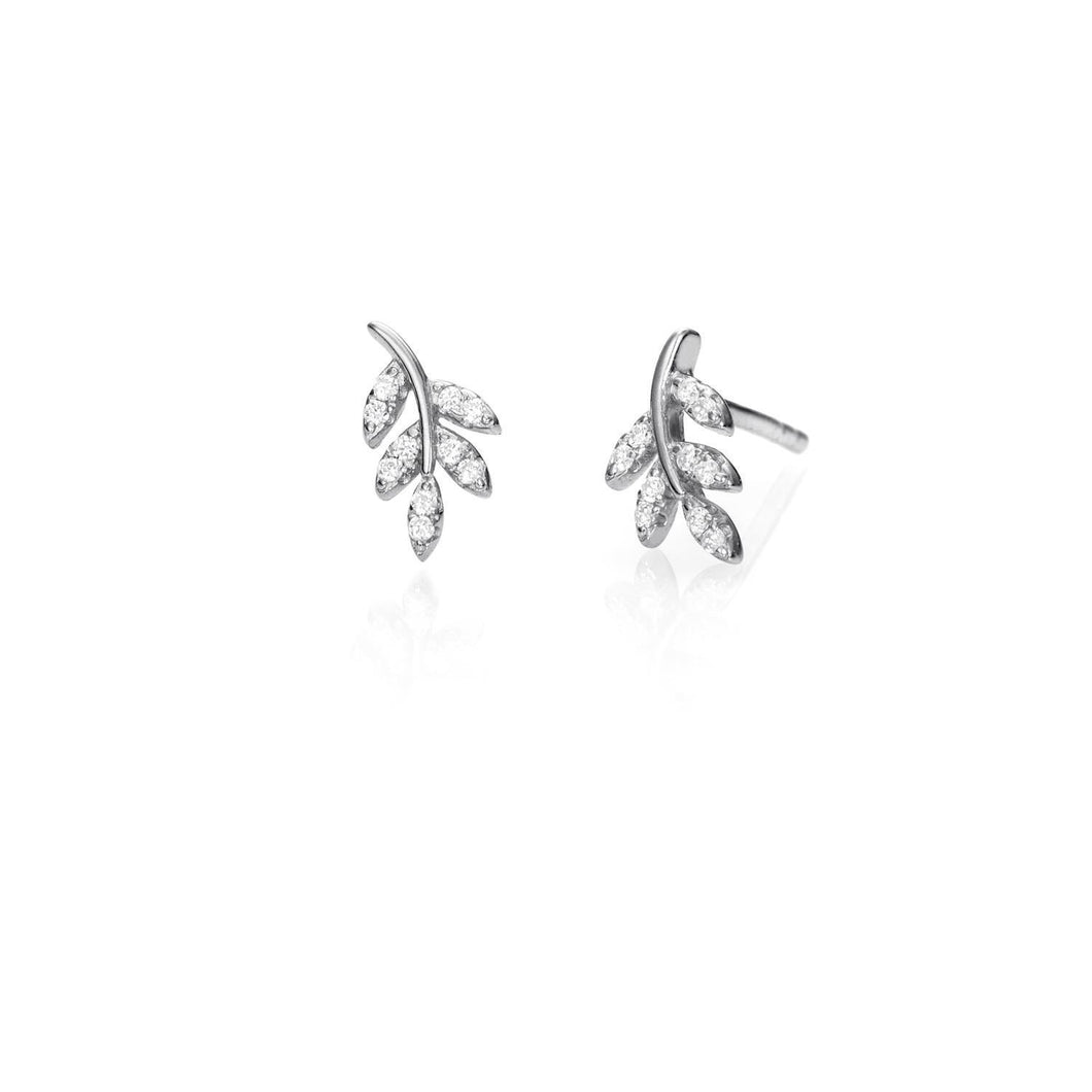 Pendientes Willow Leaf