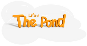 Life at the Pond