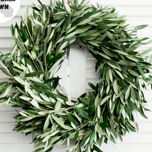 "Shop our fresh handmade 20"" Olive Branch Wreaths at Federal & Black"