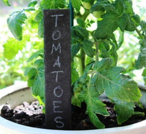 Natural Slate Garden Markers